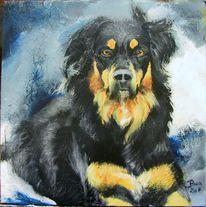 Hund, Gauner, Malerei