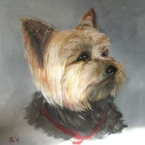 Hund portrait terrier, Malerei, Tiere