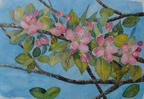 Rosa, Apfel, Luzern, Frühling