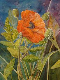 Orange, Malters, Aquarellmalerei, Blumen