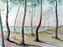 Ostsee, Uferwald, Darß, Aquarell