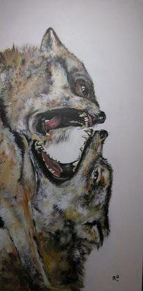 Wolf, Rudel, Kampf, Alpha
