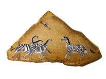 Zebra, Afrika, Streifen, Leopard