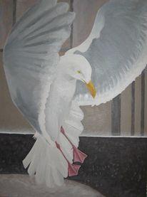 Möwe, Vogel, Malerei, Tiere