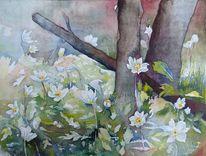Frühling, Aquarellmalerei, Buschwindröschen, Frühlingsaquarelle
