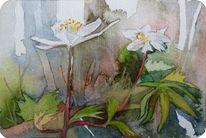 Frühlingsaquarelle, Frühling, Miniatur, Aquarellmalerei