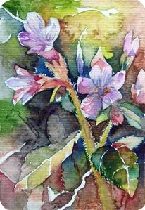 Frühling, Aquarellmalerei, Blüte, Frühlingsaquarell
