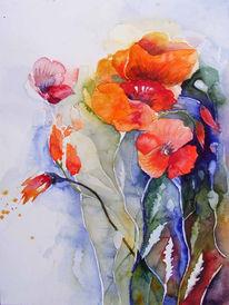 Klatschmohn, Wiese, Malerei, Farben