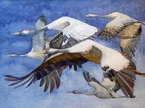Formationsflug, Kranich im flug, Aquarellmalerei, Hahnmühle