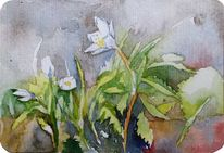 Frühling, Aquarellpostkarte, Miniatur, Anemonen