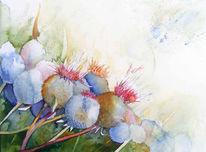 Fraben, Aquarellmalerei, Blüte, Distel