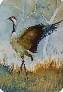 Aquarellmalerei, Kranich, Balz, Vogel