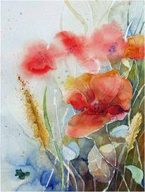 Feld, Mohnblüten, Aquarellmalerei, Getreide