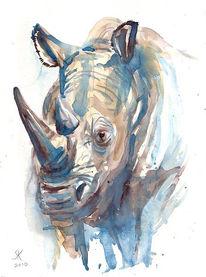 Aquarell, Nashorn