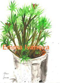 Pflanzen, Topf, Licht, Topfpflanze