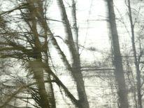 Herbst, Winterwind, Digitale kunst, Zyklus