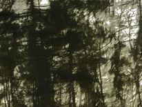 Gewebe, Tusche, Wald, Digitale kunst