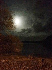 Baum, Mond, Wolken, Strand
