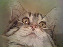 Malerei, Katze, Pastellmalerei, Tiere