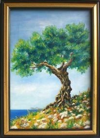 Meer, Olivenbaum, Stein, Blau