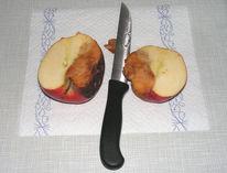 Sektion, Wahrheit, Apfel, Fotografie