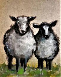 Haustier, Lamm, Schaf, Tiere