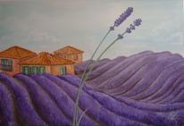 Violett, Duft, Provence, Landschaft