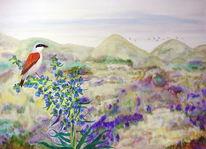 Neuntöter, Vogel, Dünen, Ölmalerei
