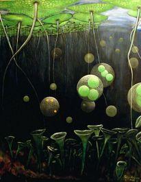 Wasserlinsen, Trompetentierchen, Natur, Volvox