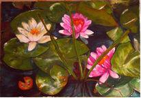 Natur, Seerosen, Teich, Malerei
