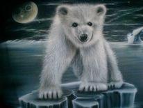 Tiere, Eislandschaft, Junger bär, Eismeer