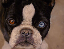 Pastellmalerei, Tiere, Portrait, Klassisch