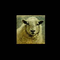 Realismus, Schaf, Hübsche, Malerei