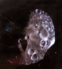 Phobos grunt, Mond, Berlin, Malerei