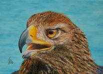 Adler, Malerei, Tiere