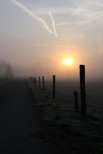 Natur, Nebel, Stimmung, Sonnenaufgang