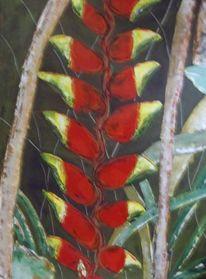 Tropisch, Blumen, Urwald, Rot