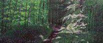Pflanzen, Grün, Licht und schatten, Wald