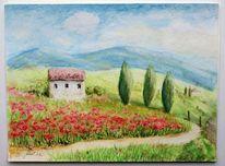 Mohn, Haus, Farben, Toskana