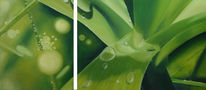 Ölmalerei, Blätter, Grün, Tropfen