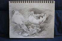 Küken, Bleistiftzeichnung, Tiere, Skizze