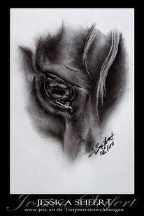 Augen, Seele, Pferde, Kohlezeichnung