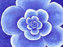 Blüte, Blau, Blumen, Hoffnung