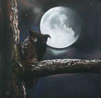 Mond, Tiere, Stern, Äste