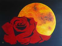 Rose, Blumen, Mond, Vollmond