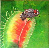 Pflanzen, Fliege, Brummer, Insekten