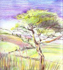 Zeichnungen, Landschaft