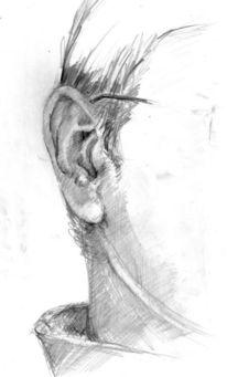 Zeichnungen, Ohr