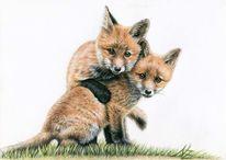 Tiere, Polychromos, Fuchs, Fuchskinder