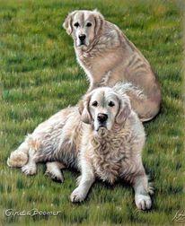 Hund, Hundeportrait, Malerei, Gold